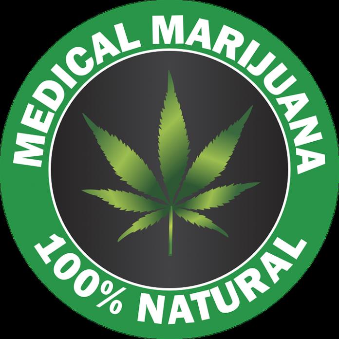 coltivazione marijuana a scopi terapeutici