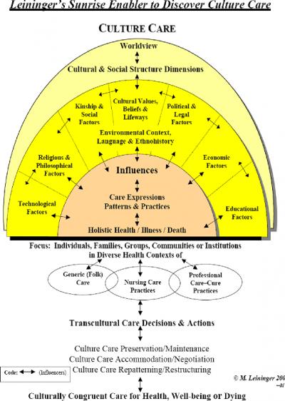 Infermieristica Transculturale il modello a sole nascente